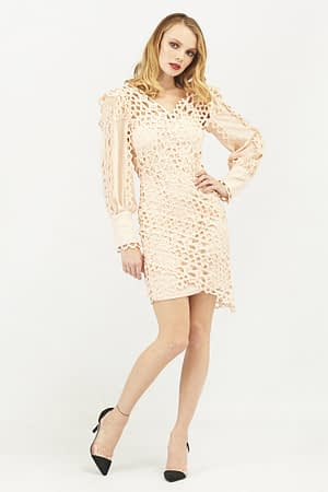 Rose Lace Long sleeve Bodycon Dress